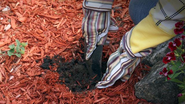 dekor mulch kaufen und liefern lassen