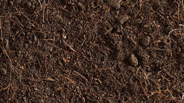Bio Dünger- Grünschnitt Fertigkompost als natürlicher Dünger
