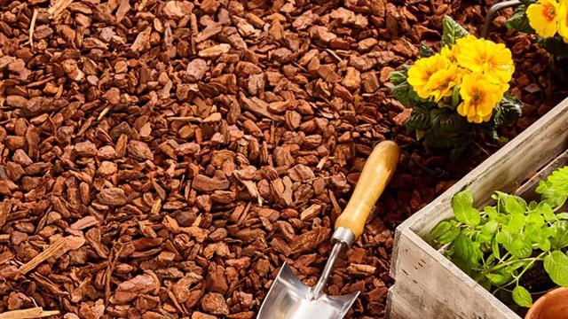 pinienrinde rindenmulch bestellen und liefern lassen