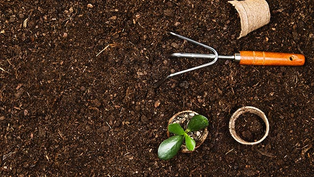 komposterde und bodenverbesserer wie Torf kaufen und liefern lassen