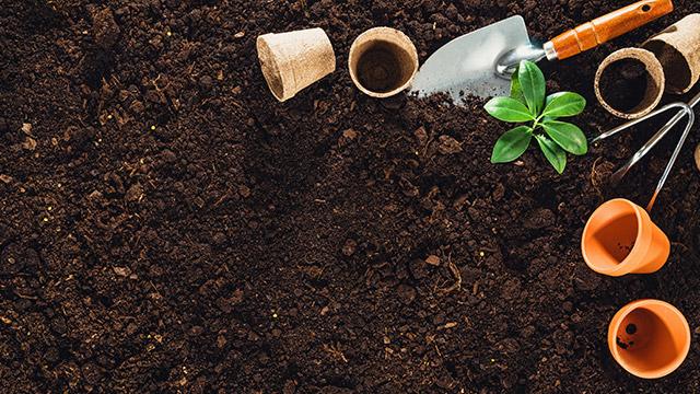 Mutterboden und Oberboden lieferung