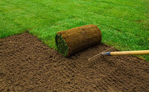 Mutterboden um einen neuen Rasen anzulegen